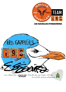 gazelle_rally_2015