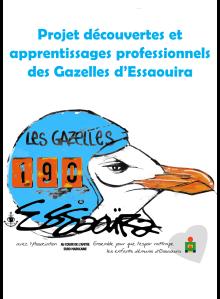Projet_DAP_Gazelles